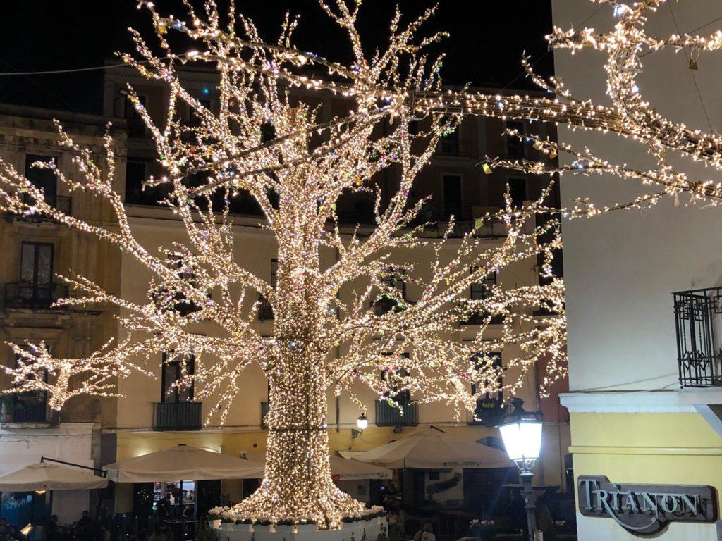 Foresta di luci in Piazza Flavio Gioia