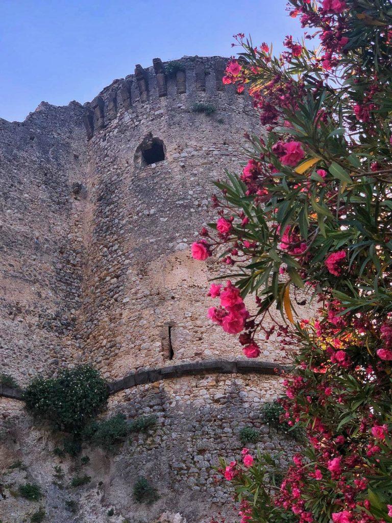 Torre in fiore