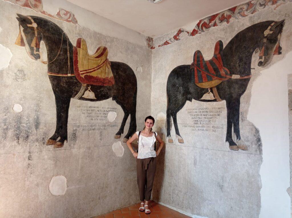 Cavalli di Enrico Pandone