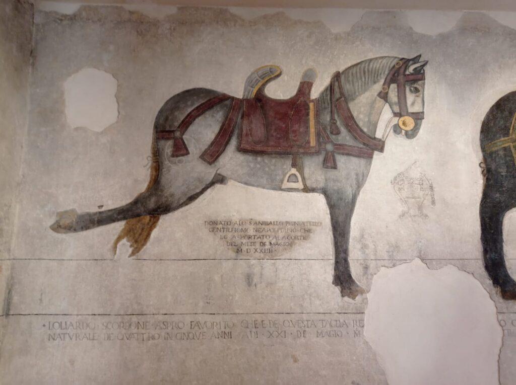 Un cavallo Pandone