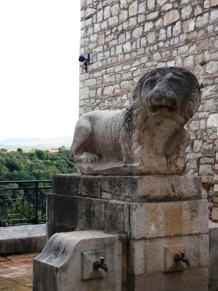 Fontana Venosa Messer OTO