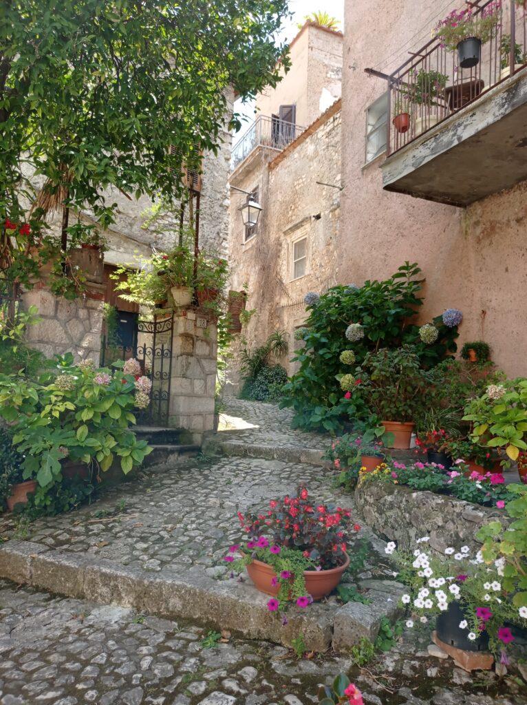 Il Borgo in fiore!